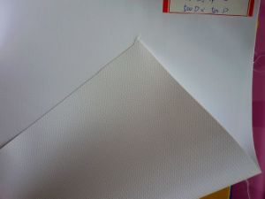 PVC Mesh Fabric for Digital Printing (500DX500D)
