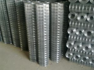 Best Selling Welded Wire Mesh pictures & photos