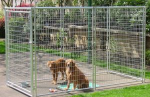 6X4X4FT Outdoor Welded Mesh Dog Kennels pictures & photos