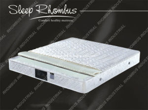 Vietanam Latex Foam Mattress with Pocket Spring (RH155)