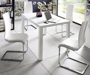 Modern Home Glass Metal Dining Room Table Furniture Set (ET70 & EC57)