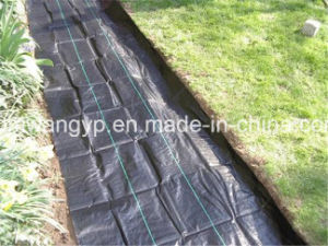 4m X 200m Black Weed Control Mat pictures & photos