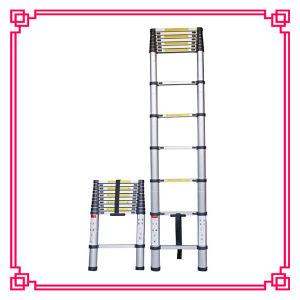 Attic Ladder with CE En131 Standard (DLT212) pictures & photos