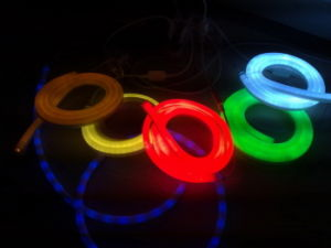 LED Neon Flex Rope Light with Color Jacket pictures & photos