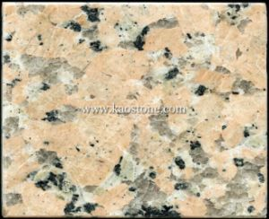 Huidong Red Stone Tiles for Kitchen Floor and Wall pictures & photos