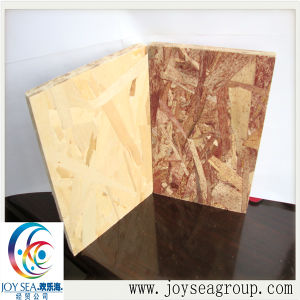 OSB/Oriented Strand Board for Furniture, Packing, Construction pictures & photos
