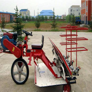 Stainless Steel Belt Type Rice Transplanter (2ZT-10238BG)