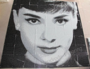 Mosaic Art Pattern/ Picture Mosaic for Wall Decoration (HMP770) pictures & photos
