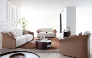 European Modern Classics Fabric Sofa Leather Sofa pictures & photos
