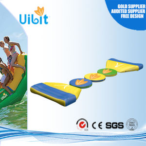 Good Quality Inflatable Water Park Products for Swimming Pool (Wiggle Bridge) pictures & photos
