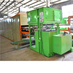 Fruit Tray Making Machine with Ce Certificate