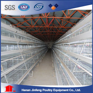 a Type Chicken Layer Cage with Automatic Drinker System Egg Collection pictures & photos