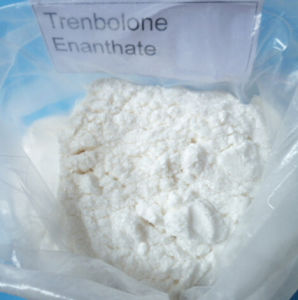 Bodybuliding Steroid Powders Parabola Trenbolone Enanthate