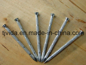 Eg Concete Bamboo Nails with Excellent Quality pictures & photos