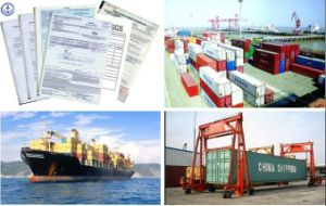 Consolidate Lowest Sea Freight / Best Sea Freight to Dubai pictures & photos