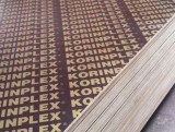 18mm Film Faced Plywood Shandong Manufacture/Construction Plywood pictures & photos