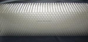 Transparent PC Honey Comb Panel pictures & photos