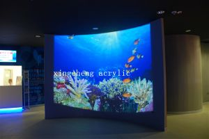 Wall-Mounted Plexiglass Indoor Fish Tank pictures & photos