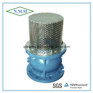Cast Ductile Iron Flanged Foot Valve Pn16 pictures & photos
