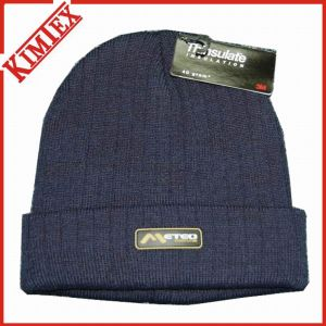 100% Acrylic Winter Warm Thinsulate Hat pictures & photos
