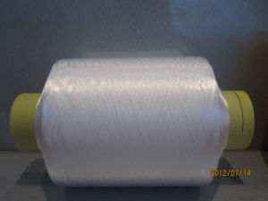 Nylon 6 Yarn with Twisted (280D)