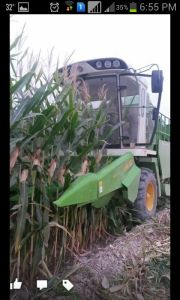 4yz-3b Corn Maize Combine Harvester for Sale