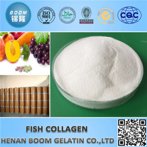 Cosmetic Grade Fish Collgen Peptide for Anti-Wrinkle pictures & photos