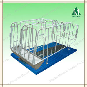 Pig Crate/Pig Stall/Sow Galvanized Gestation Stall pictures & photos
