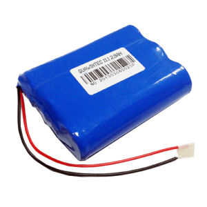 18650 Battery Pack / 11.1V 2900mAh Li-ion Battery Pack pictures & photos