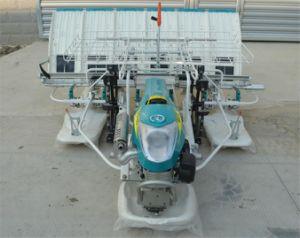 Rice Transplanter Model 2fmzs-6c (Kubota SPW-68C transplanter standard, walking type, 6 rows) pictures & photos