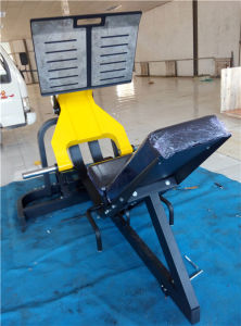 Free Weight Gym Equipment Names Leg Press Machine (FW09) pictures & photos