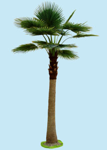 Artificial Plants and Flowers of Fan Palm 4.8m pictures & photos