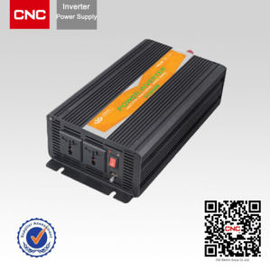 300W Pure Sine Wave Inverter pictures & photos
