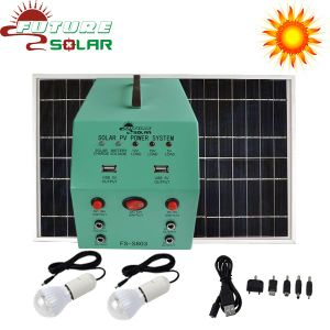 Solar Electricity Generating System for Laptop Charging