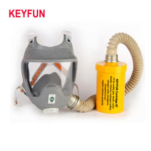 Full Face Mask Protector Respirator Double Filter Gas Mask pictures & photos