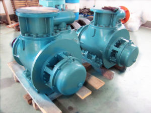 W. V Series Twin Screw Oil Pump pictures & photos