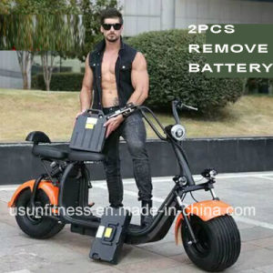 Electric Motor Bike with 2PCS Remove Battery pictures & photos