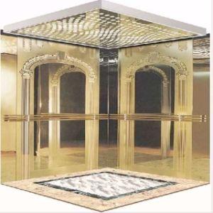 Fujizy 800/1000/1600kg Passenger Lift Passenger Elevator pictures & photos