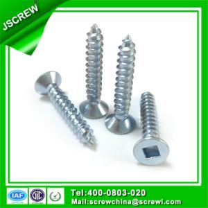 Custom M3.5*40 Flat Head Self Tapping Screw for Metal pictures & photos