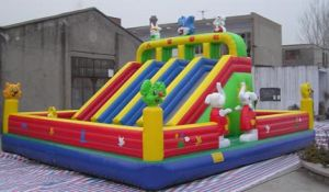 Commercial Jumping Castles with Slide Sale Now pictures & photos