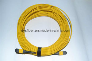 MTP/APC (M) -MTP/APC (F) 12f Sm 3.0mm 30 Meters MTP Patch Cord pictures & photos