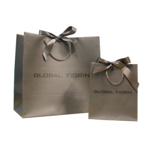 Custom Logo Printing Paper Gift Bag pictures & photos
