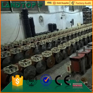 China famous brand TOPS Single phase Alternator pictures & photos
