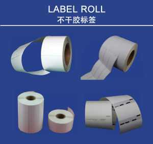 High Quality 40mm X 30mm Dtl Direct Thermal Label Roll pictures & photos