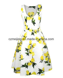 Printed Fruit Women`S Dress pictures & photos
