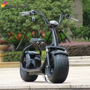 Shenzhen Factory City Coco 1000W Fat Tire Electric Motorcycle pictures & photos