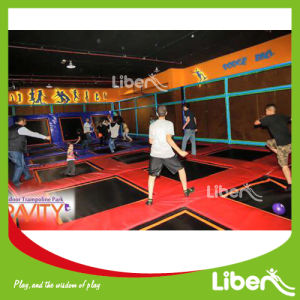 Big Indoor Gymnastic Trampoline with Dodge Ball in Trampoline Park pictures & photos