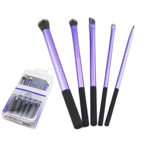 5PCS/Set High Quality Eyes Makeup Brushes Set with Case pictures & photos