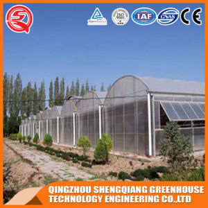 Vegetables/Garden/Flowers/Farm Plasti⪞ Film Tunnel Greenhouse pictures & photos