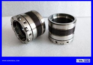 Metal Bellow Mechanical Seal as-Bj09 Replace Johncrane 609